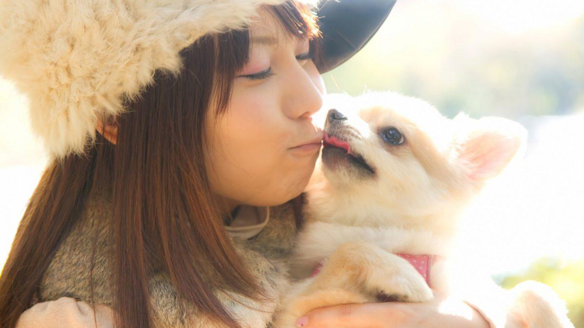 【犬好き☆猫好き集まれ!】わんわんランドで婚活♪【つくば市】
