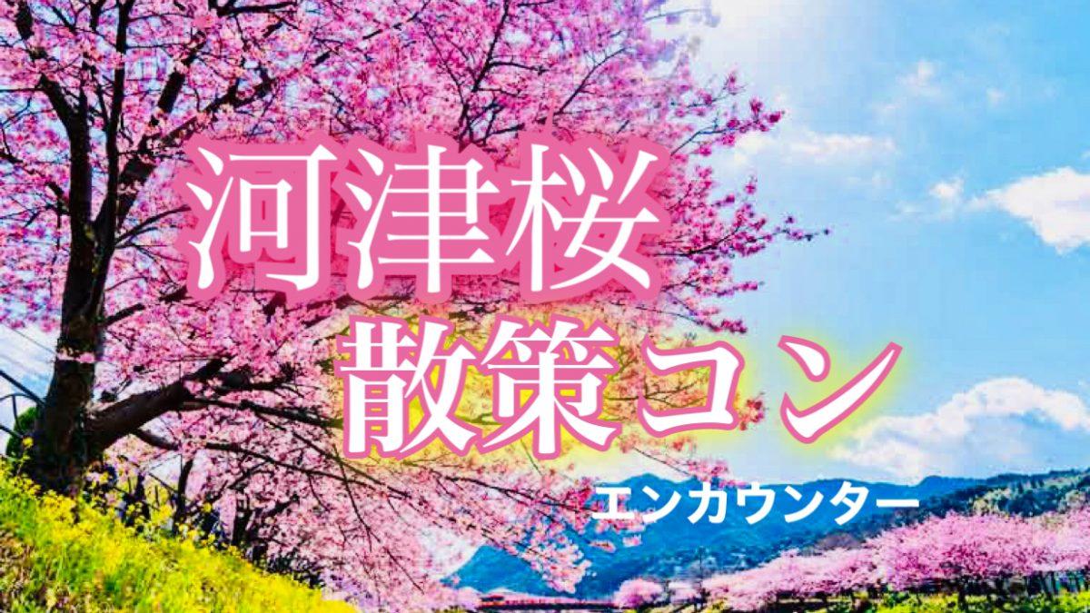 3/3河津桜まつり散策コン♡