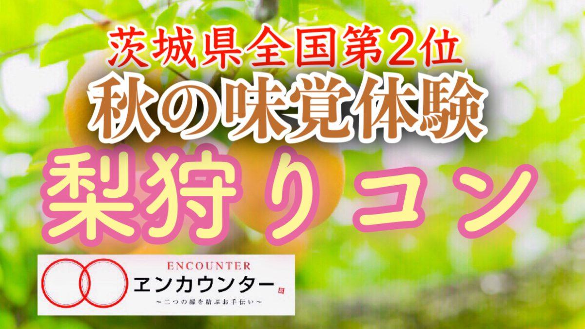 9/16 もぎたて!新鮮でみずみずしい梨狩りコン♡